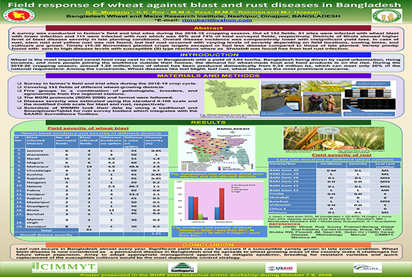 Field response of wheat against blast and rust disease in Bangladesh